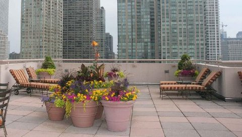 Great Rooftop With New Furn