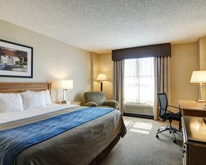 Room - Comfort Inn & Suites Downtown Little Rock