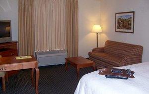 Room - Hampton Inn Wichita Falls