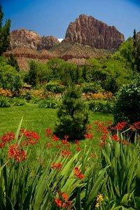 cliffrose lodge gardens. Exterior View - Cliffrose Lodge \u0026 Gardens Springdale