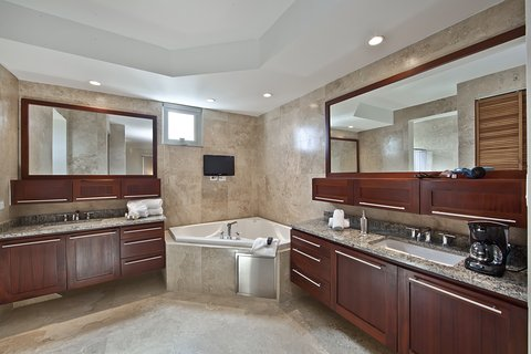 1 and 2 Bedroom Suite Master Bathroom