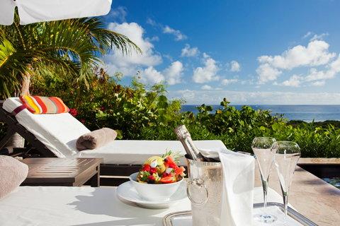 Terrace 1 bedroom Villa Suite