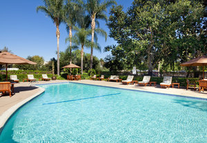 Pool - Sheraton Hotel Fairplex Pomona